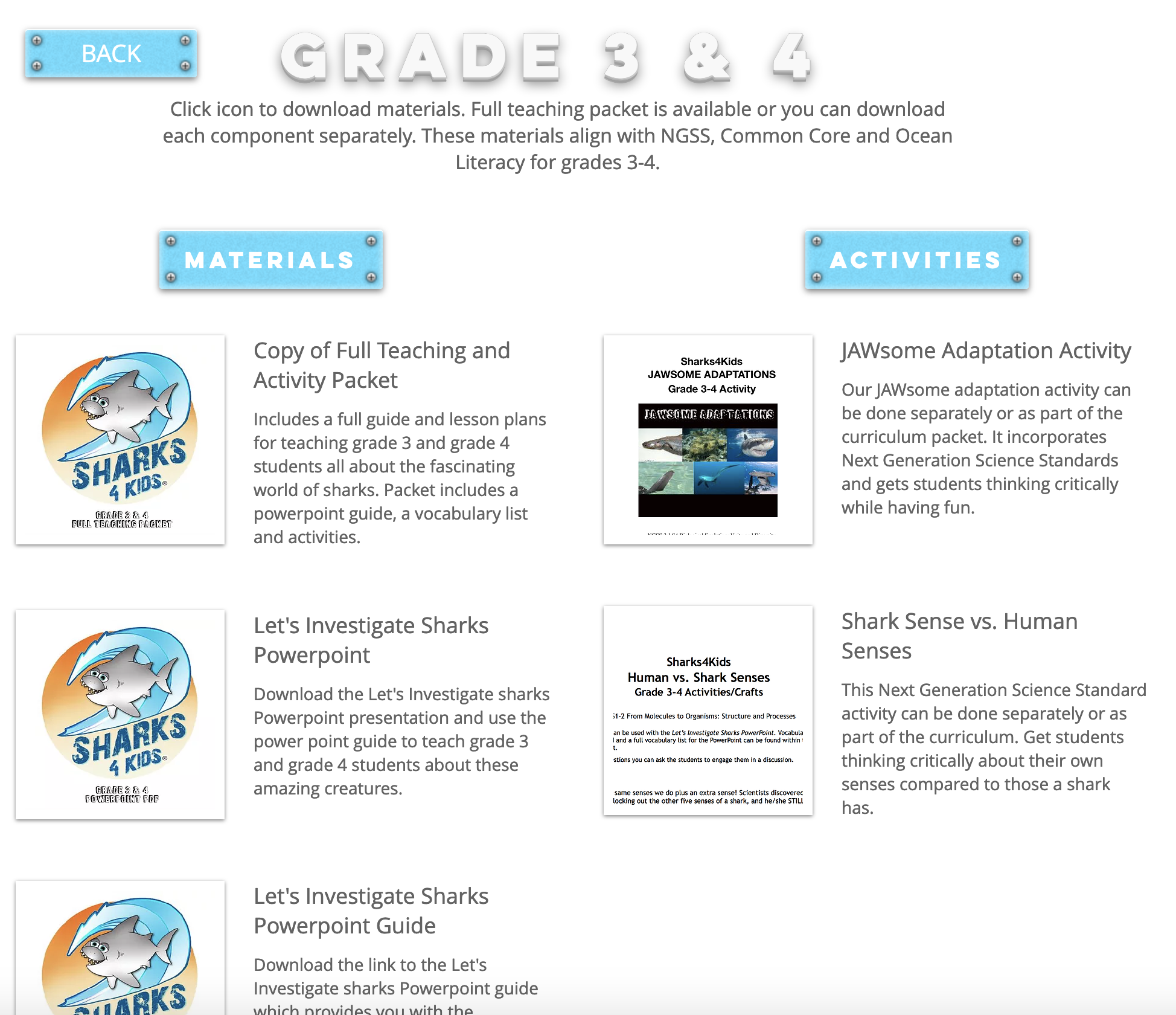 Dive Into The World Of Sharks With Our Lesson Plan