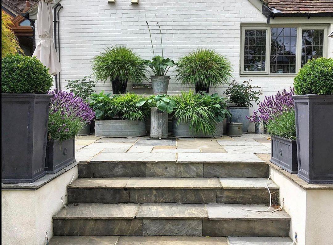 "Small Magical Garden Spaces on Instagram: ""Love this💜💚🌿🍃 #smallmagicalgardens #smallgarden #gardendesign #gardening #courtyardgarden  #topiary #baytree #elegantgarden…"""