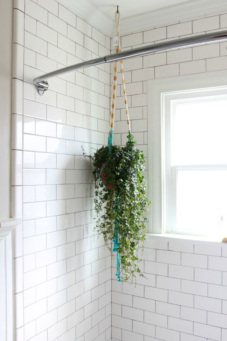 Bathroom Updates Plants Pictures And Potty Training The Grit