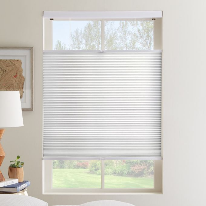 1 2 Single Cell Value Plus Cordless Top Down Bottom Up Light Filter Honeycomb Shades Cellular Shades Honeycomb Shades Window Cellular Shades