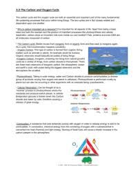 carbon cycle gizmo answer key pdf - Google Search in 2020 ...