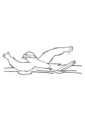 ausmalbild schwimmender vogel zum ausmalen. ausmalbilder   ausmalbildervögel   malvorlagen