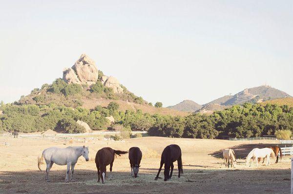 Rustic Saddlerock Ranch Wedding - Inspired By This www.MadamPaloozaEmporium.com www.facebook.com/MadamPalooza
