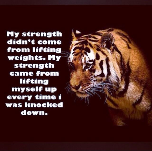 29 Best Tiger Quotes Images Tiger Quotes Quotes Tiger