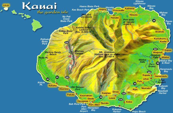 At condo on beach at Loloa KAUAI | Kauai | Pinterest ...