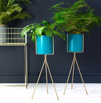 Teal And Gold Tall Plant Stand images