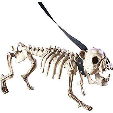 Halloween Shop online Posable Skeleton Dog Halloween Decoration