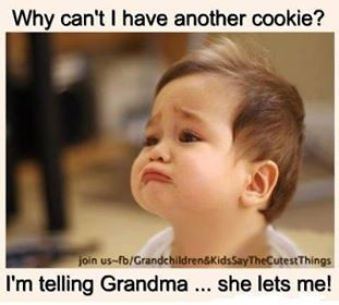 I M Telling Grandma She Lets Me Miss You Funny Funny Pictures Feel Better Meme
