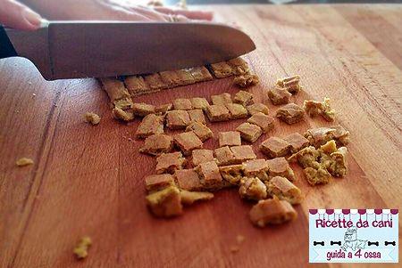 Crocchette per cani al salmonte fatte in casa cucina casalinga per cani dalimentazione e cure - Cucina casalinga per cani dosi ...
