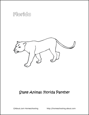 florida animals coloring pages - photo#18