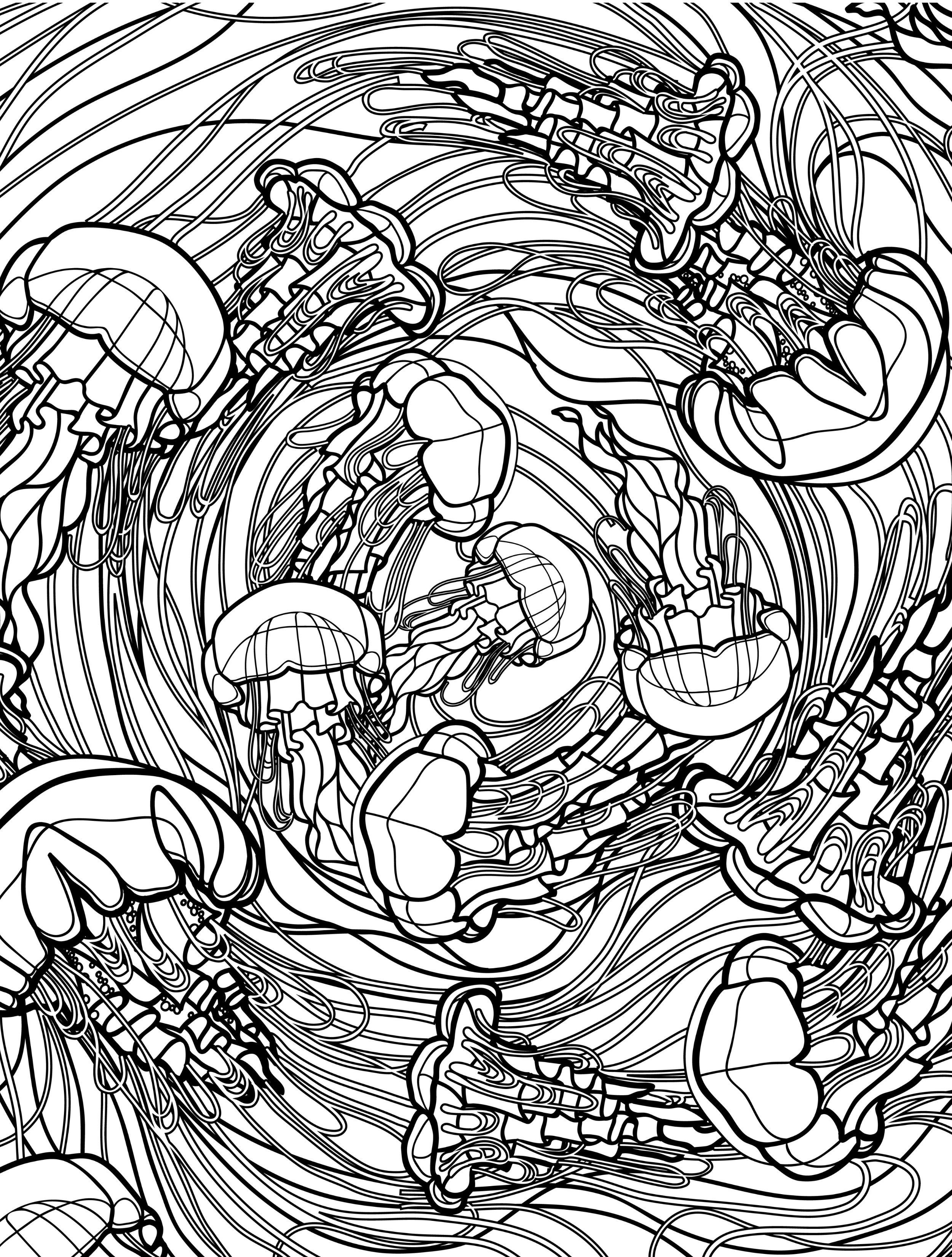 Lovely Free Ocean Coloring Pages 31  Free Printable Insect