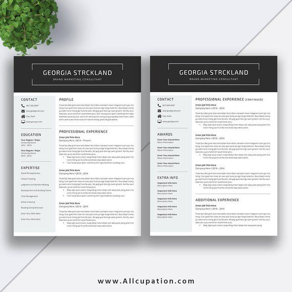 2020 Professional Resume Template / CV Template For Job
