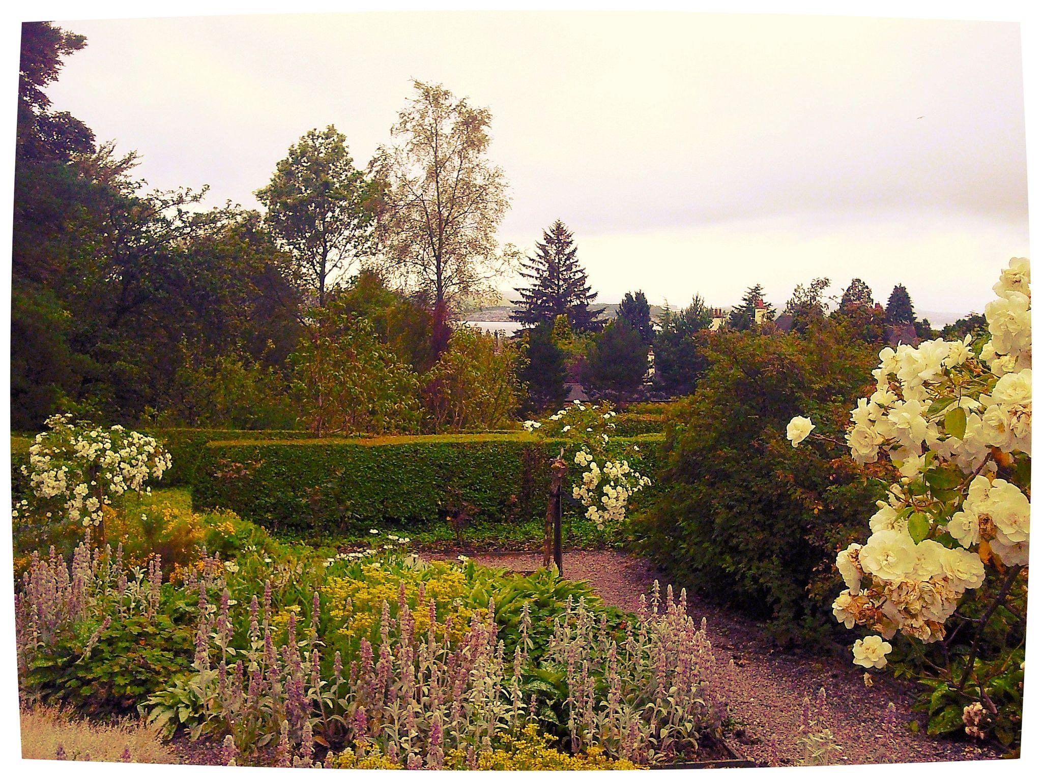 Garden at Hill House, Helensburgh, Scotland | Scotland, Garden trees ...