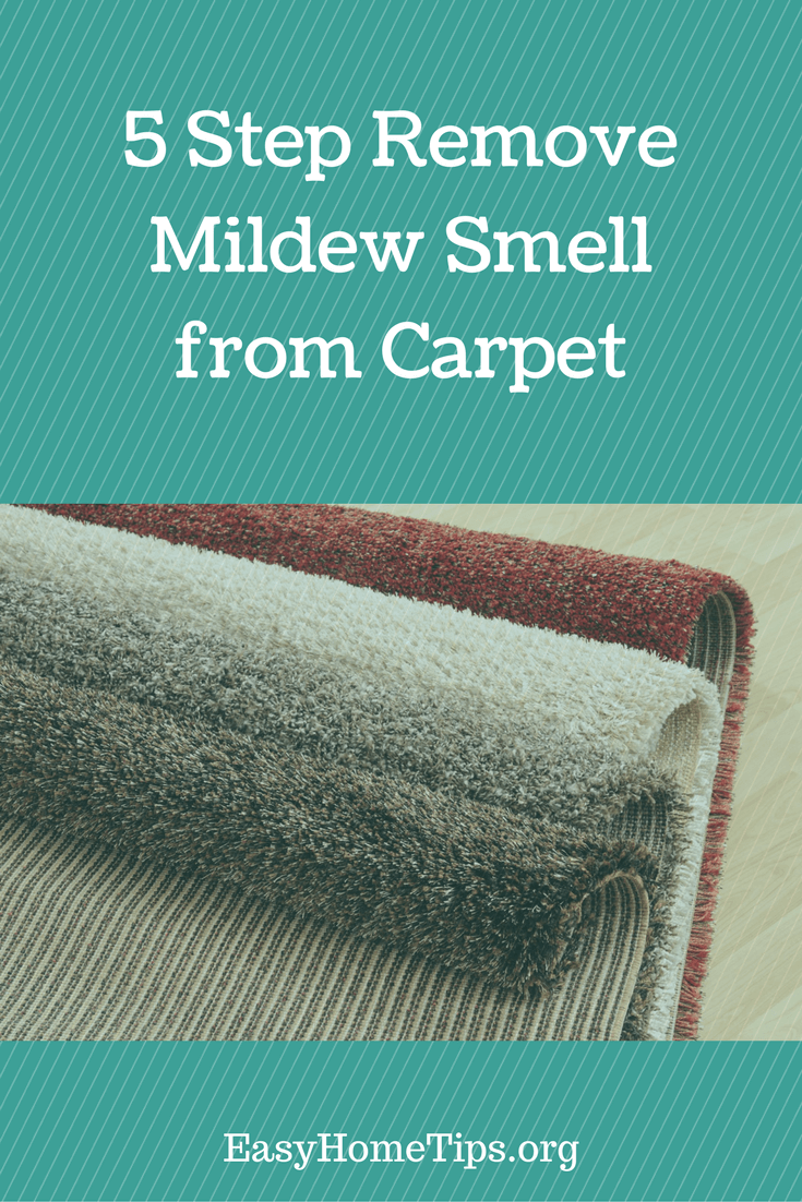 5 Step How To Remove Mildew Smell From Carpet Home Tips