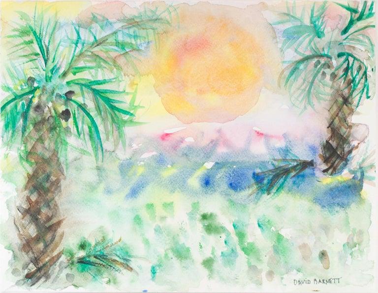 David Barnett Florida Gulf Coast Sanibel Island Sunset