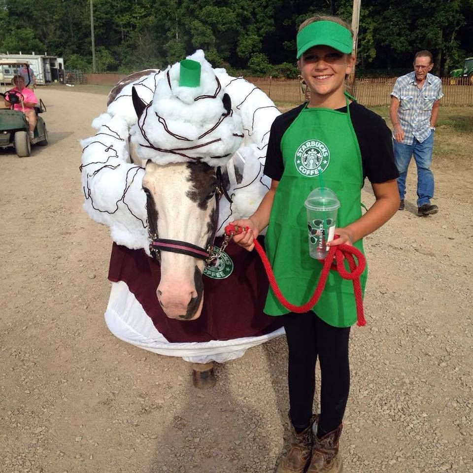 Starbucks Horse Costume Submitted By Michelle Wellington See A