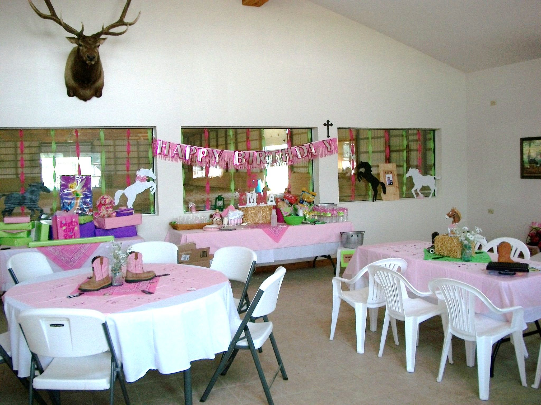 Party Room (With images) Cowgirl party, Party themes, Party
