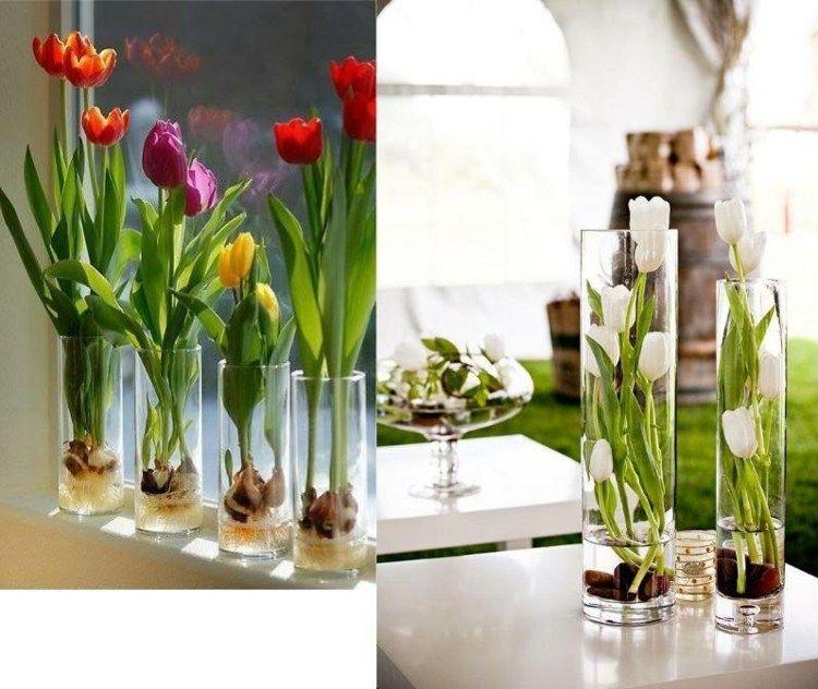 ideenreiche osterdekoration mit tulpen kultiviert in glas ideen rund ums haus pinterest. Black Bedroom Furniture Sets. Home Design Ideas