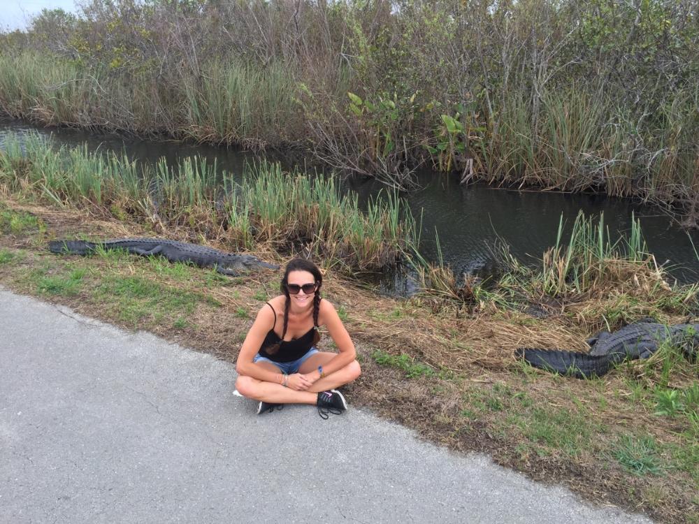 Shark Valley Biking In The Everglades South Florida Everglades