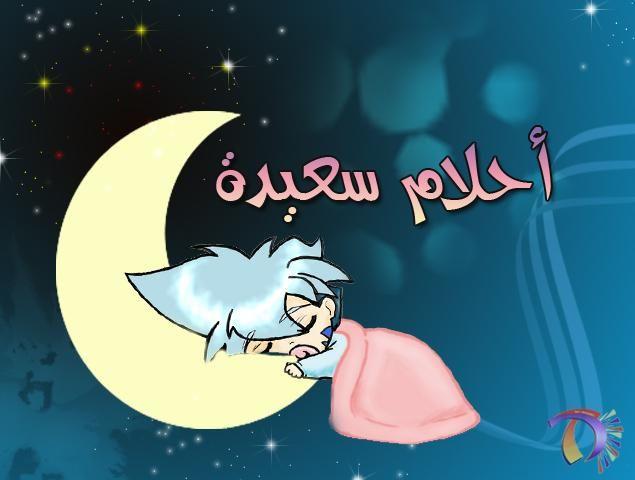 صور تصبحون على خير Good Night صور احلام سعيدة اخبار العراق Night Love Nighty Night Flower Wallpaper