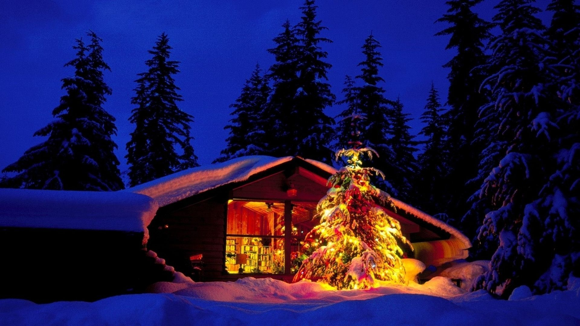 Cool Christmas And Winter Wallpapers For Your Desktop 1920x1080 56