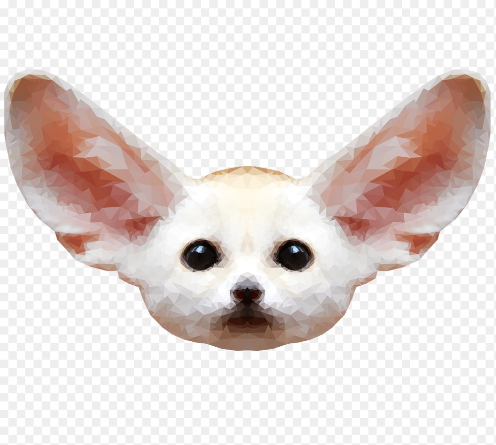 Fennec Fox Png Fennec Fox Png Free Download Png Mart 1185 1064 Png Download Free Transparent Background Fennec Fox Png Png Download Fennec Fox Png Fox