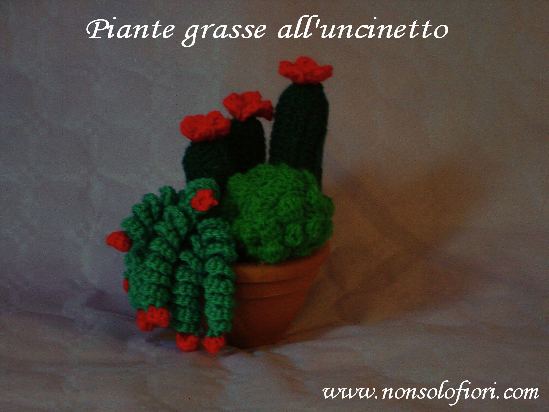 Rametto spirale all 39 uncinetto per piante grasse fiori for Il blog di sam piante grasse