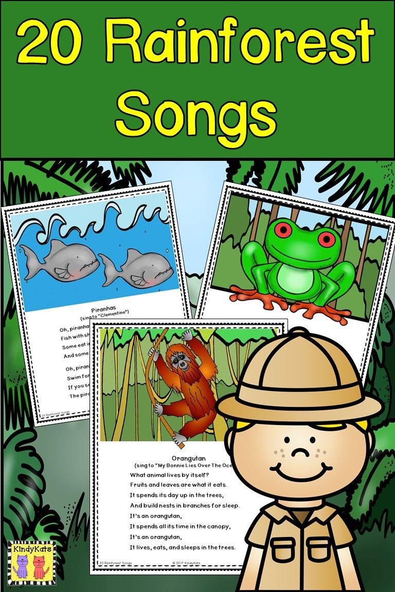 Rainforest Songs Rainforest Song Rainforest Classroom Rainforest Activities
