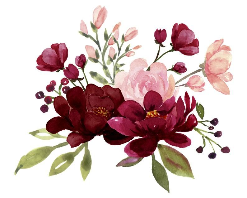 Watercolor Floral Bouquet Flowers Plant Watercolor Png