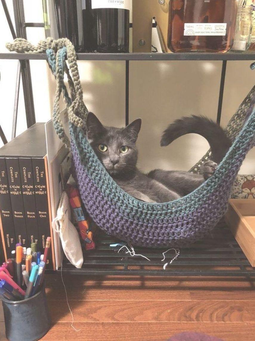 Free Crochet Toy Hammock Pattern I Crocheted A Cat Hammock Crochet Cat Hammock Crochet Cat Hammock Pattern Cat Hammock