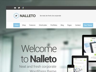 Nalleto - 라이트 블루 회사 피부