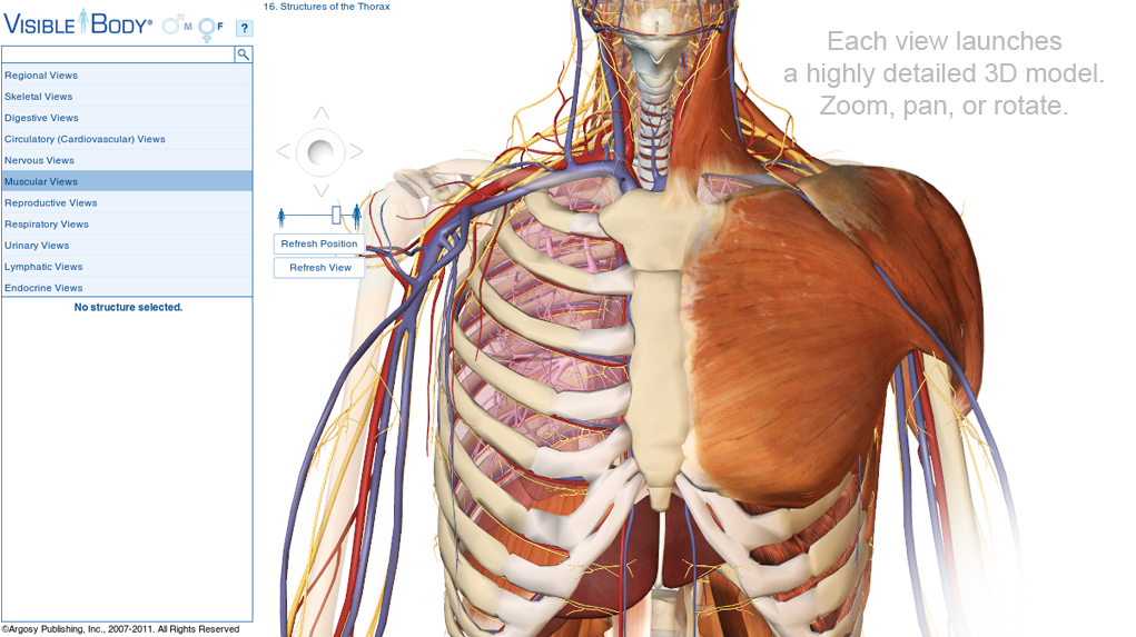 Visible Body 3d Human Anatomy Sure Could Have Used This During My