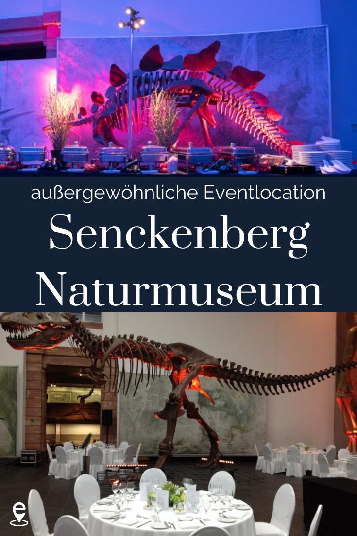 Eine Aussergewohnliche Eventlocation Senckenberg Museum In 2020 Museum Frankfurt Am Main Eventlocation