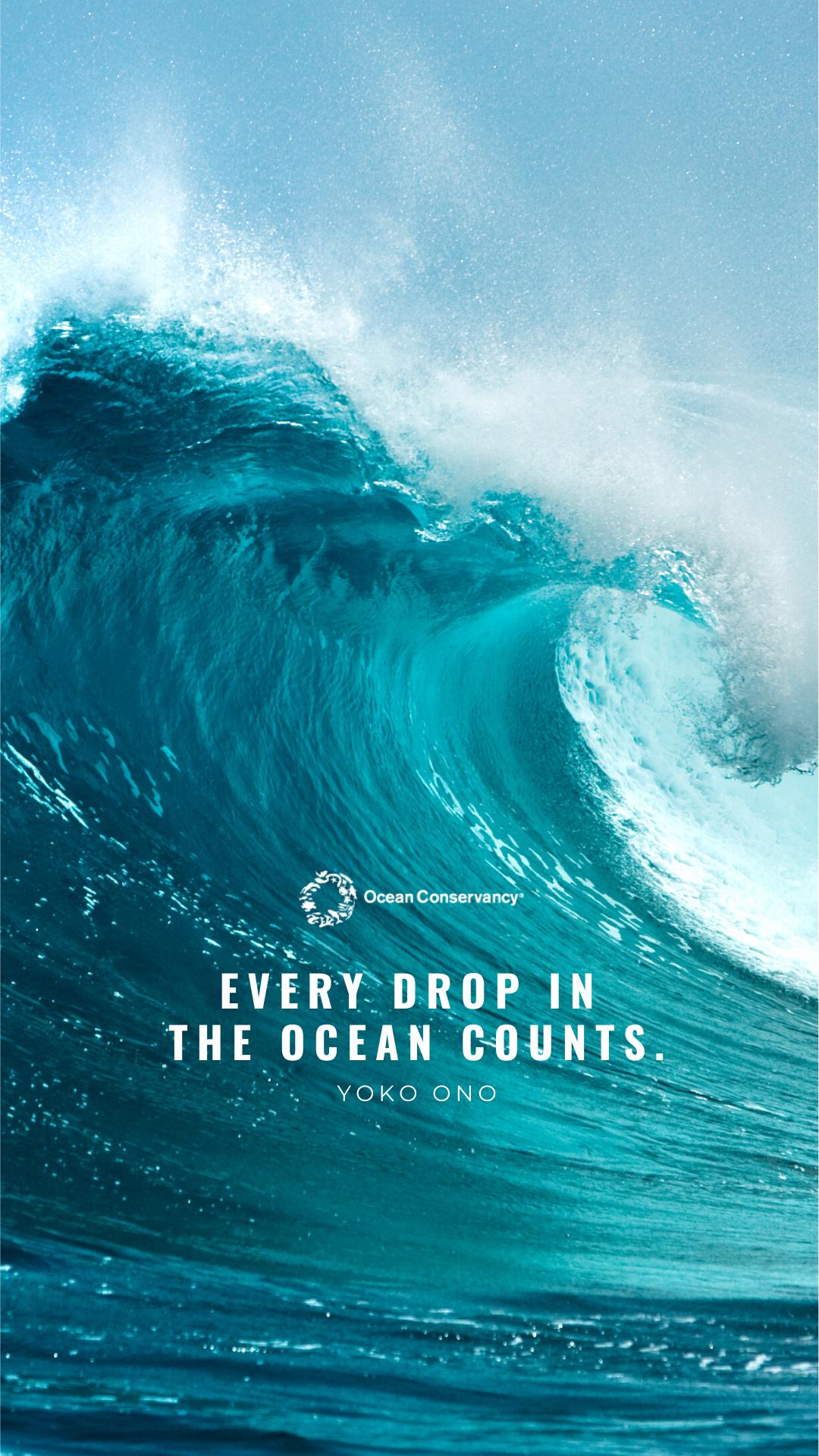 Ocean Inspired Wallpapers in 2020 Ocean wallpaper, Ocean