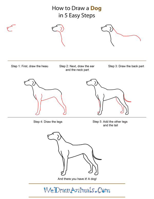 Image result for draw dog step by step