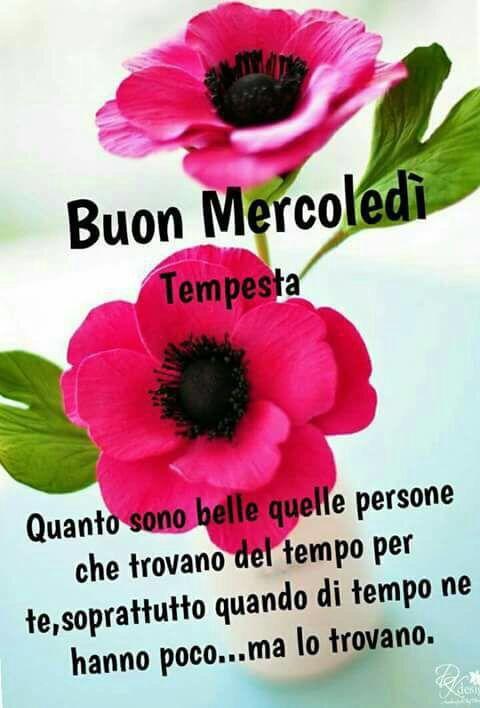 sociala media italienska tuttar