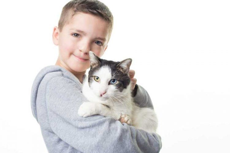 Minnesota Boy Adopts A Cat From Oklahoma With The Same Cleft Lip And Different Colored Eyes As His Cat Adoption Different Colored Eyes Cleft Lip