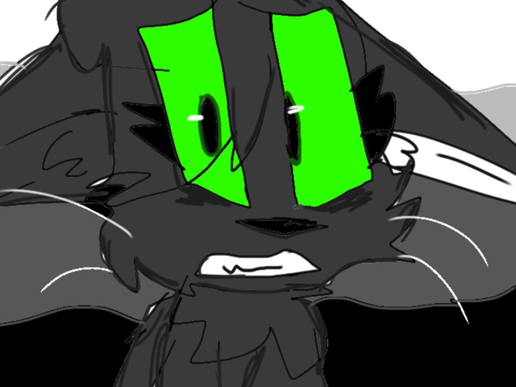 It Is Hollyleaf From Warrior Cats I Made This For My Best Friend