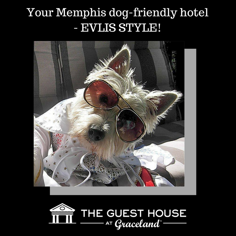The Best Memphis Hotel Packages Memphis Hotels Hotel Packages Memphis