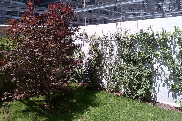 Parco vittoria milano giardini pensili delle residenze private