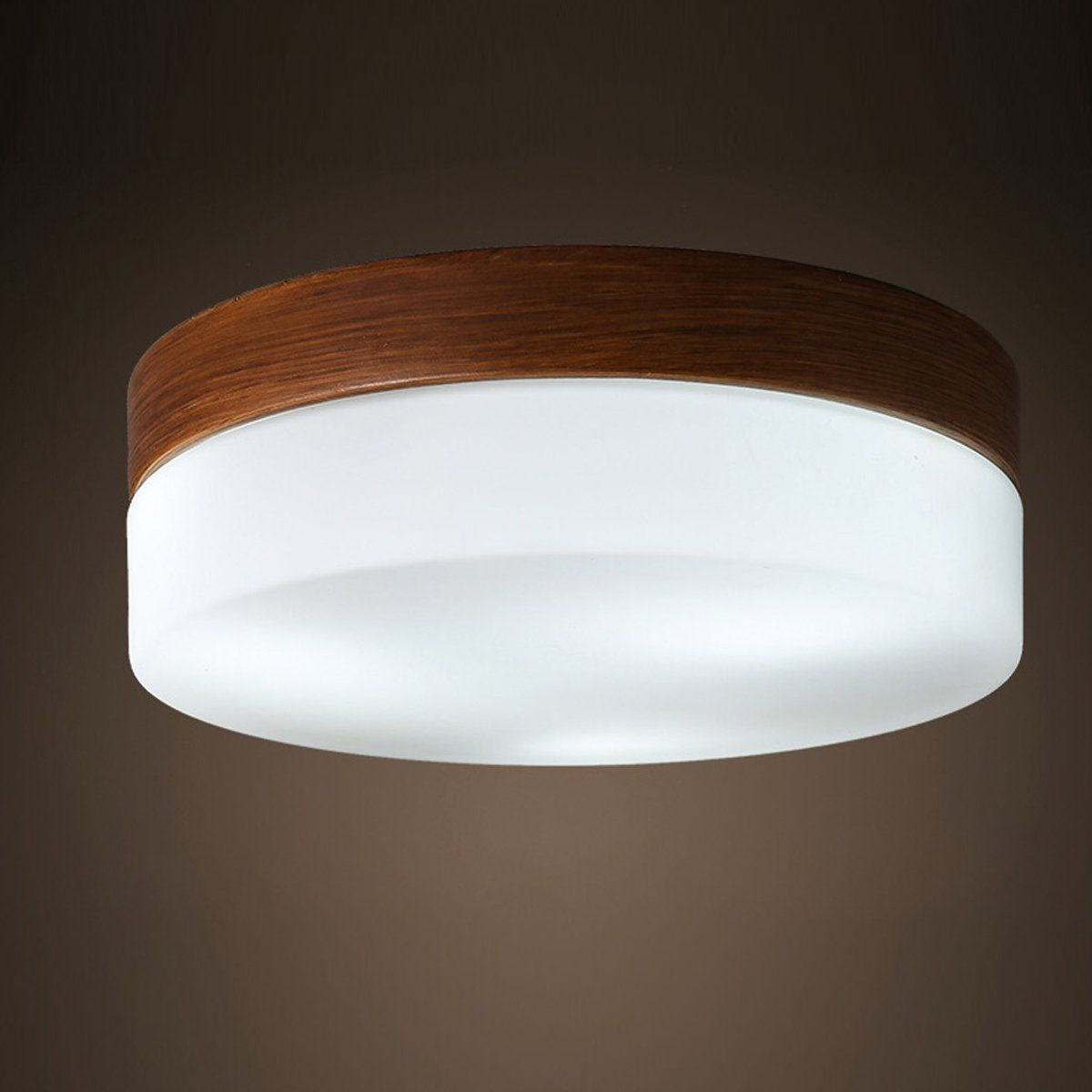 Maso Home Ms61757 The Led Simple Design Fashion Ceiling Light Of