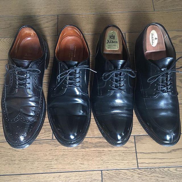 2017/06/11 10:50:37 hidenaotakagi My Alden Shoes  #alden #aldenshoes #aldenarmy #オールデン #shellcordovan #新宿 #靴磨き #新宿靴磨き #shoecare #shoeshine #shoeshiner #shoestagram #shoeslover #mensshoes #mensstyle #mensfashion #メンズファッション #メンズ #ファッション #紳士靴 #靴 #革靴 #saphir #サフィール #足元倶楽部 #東京 #理容室 #バーバー#tokyo #nofilter