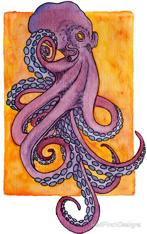 Photo of 'Purple octopus tattoo style watercolor illustration' Sticker by RedFinchDesigns