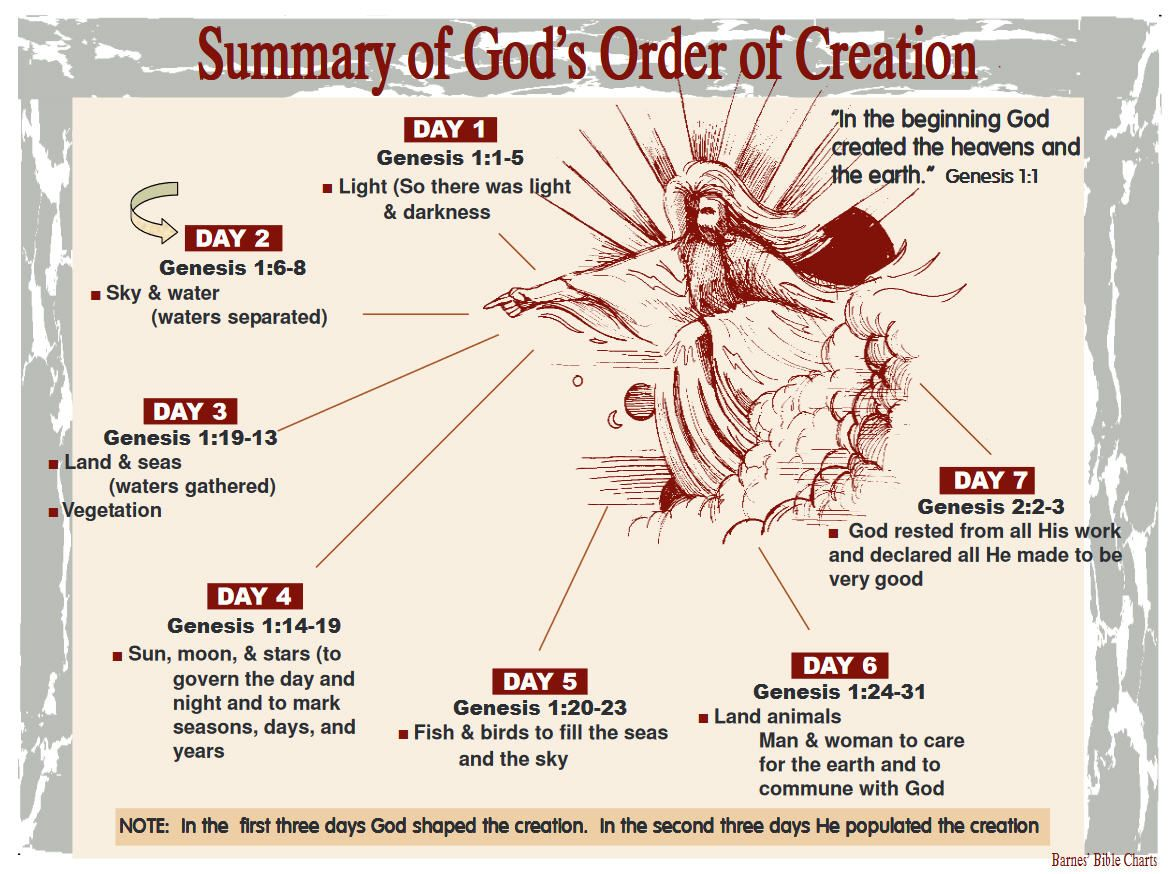 Summary of God's Order of Creation