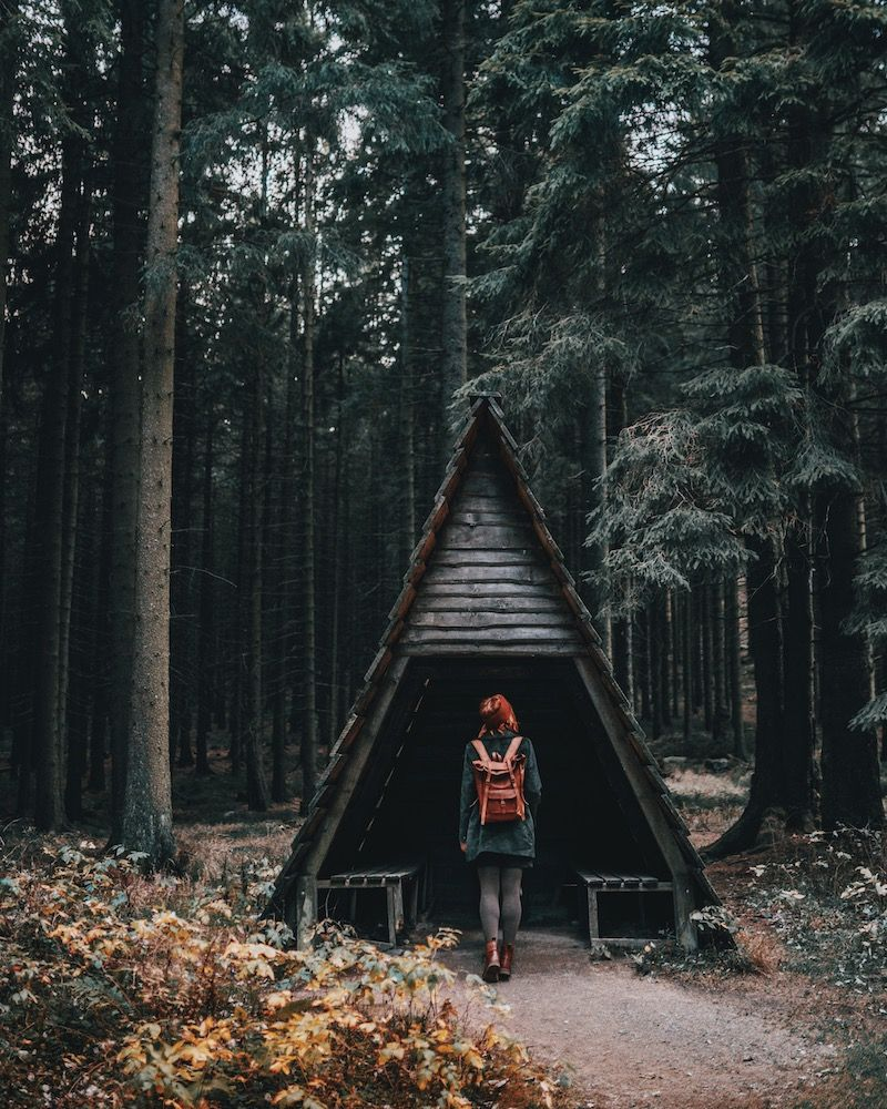 Urlaub Im Harz Highlights Orte Abseits Der Touristenpfade In 2020 Harz Urlaub Ferien Reisen Urlaub