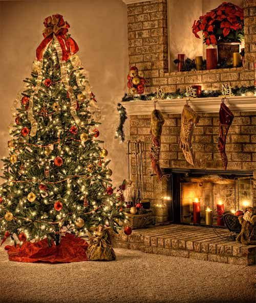 Christmas Tree Decoration Ideas ~