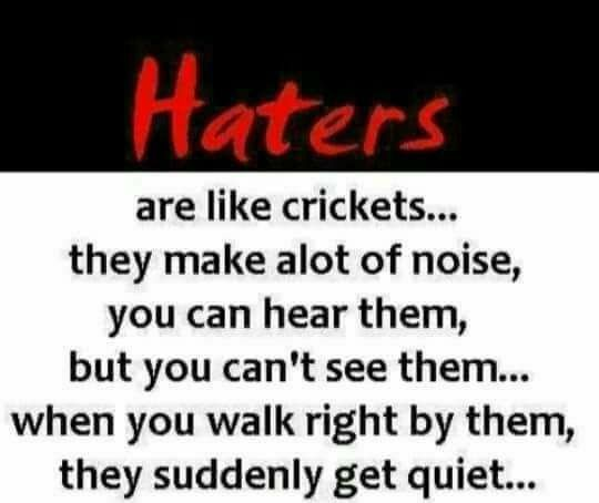 Pin On Haters Gonna Hate Stalker
