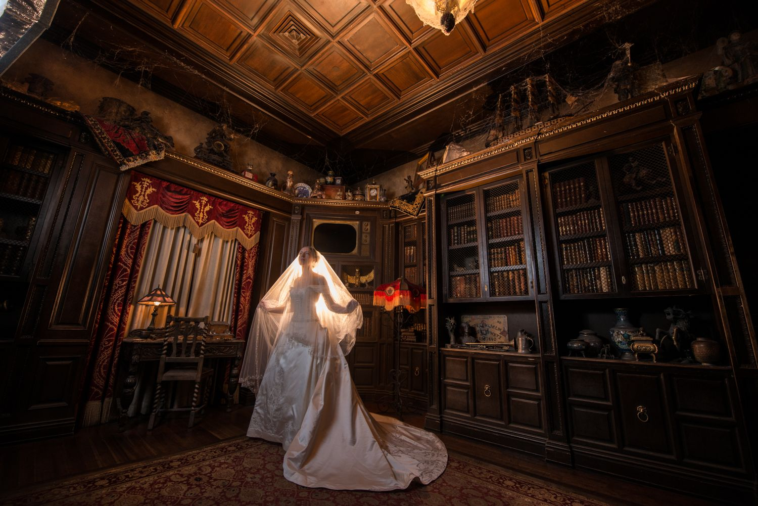Haunting bridal portrait inside The Twilight Zone Tower of ...