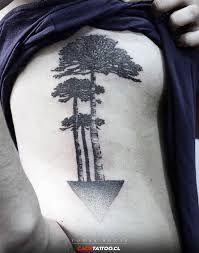 Resultado de imagem para tatuajes de araucaria