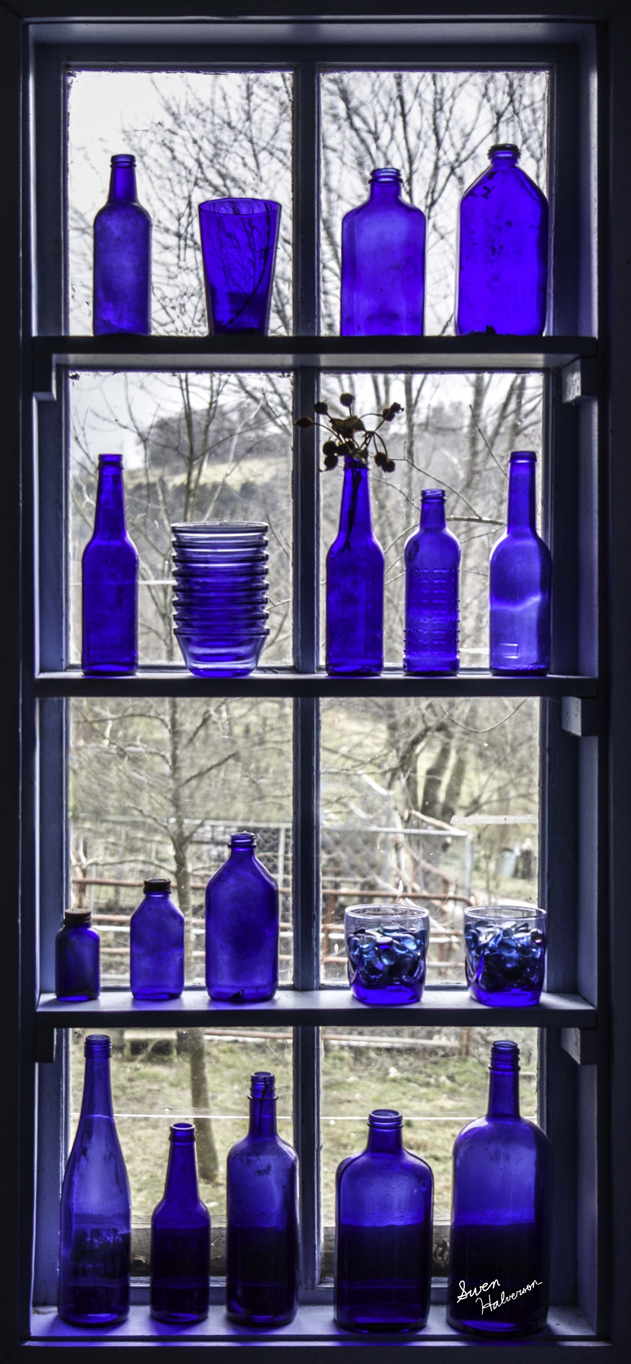 Cape cod charm happy as a clam serafini amelia theme melodic cape cod charm happy as a clam serafini amelia theme melodic title blue glass bottlesblue bottlecobalt floridaeventfo Image collections